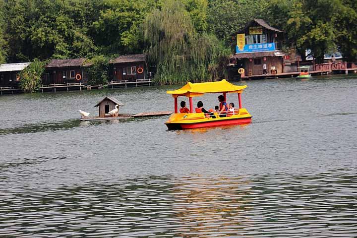深圳第一家散发着大自然清新气息的