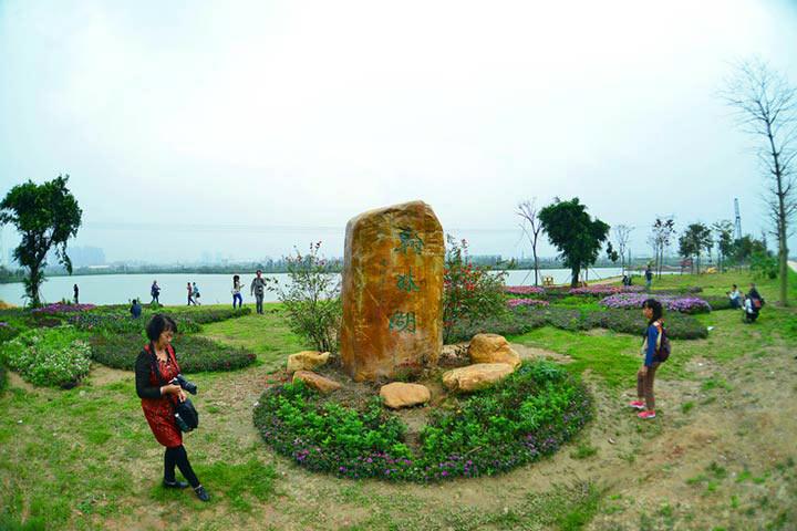 丹灶神秘花海!20亩薰衣草&波斯菊_翰林湖都市型生态园