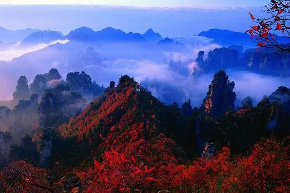 绝美张家界国家森林公园(4)
