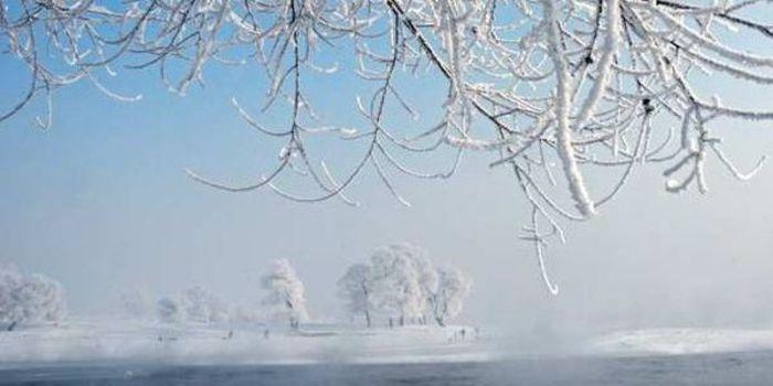 2014吉林雾凇冰雪节图片