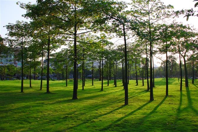 26,二沙岛(宏城公园,传祺公园,发展公园.体育公园)