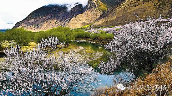 高清风景图片林溪小道