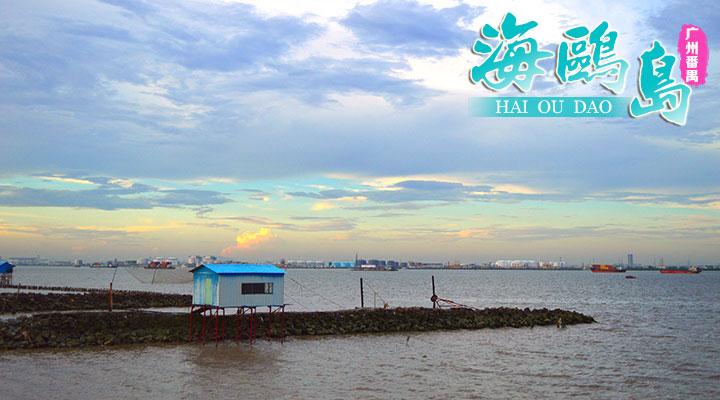 海鸥岛位于广州市番禺区石楼镇,从市区出发约1小时.